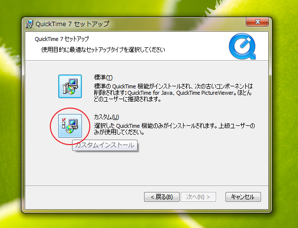 installingquicktime_with_custom